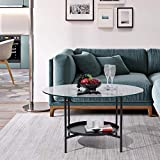 Round Coffee Table, 31.3'' Tempered Glass Top, Industrial Style 2-Tier Sofa Side Table with Storage Shelf & Metal Frame, 132lbs Capacity, Easy Assembly Accent Center Table for Living Room, Black