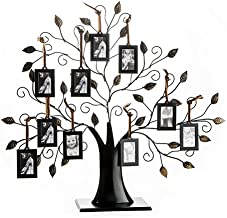 Best tree of life picture frame holder Reviews