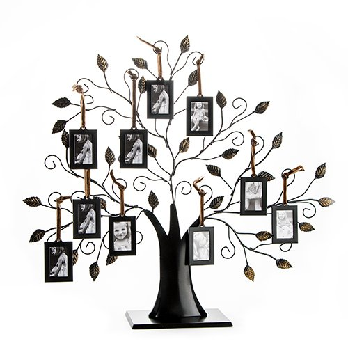 Family Tree Picture Frame Display