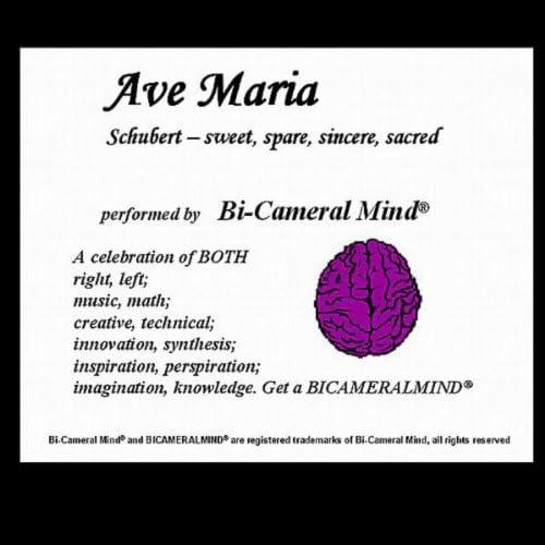 Bi-Cameral Mind