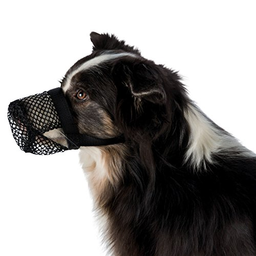 FamilyZoo ® | Giftköder - Schutznetz | Polyester | XS z.B. Yorkshire Terrier | Schwarz