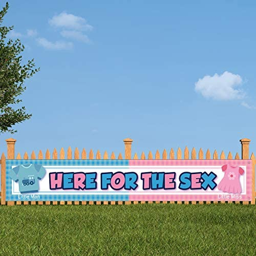 Large Here for The Sex Banner Decorations for Baby Gender Reveal Party Pink and Blue Here for product image