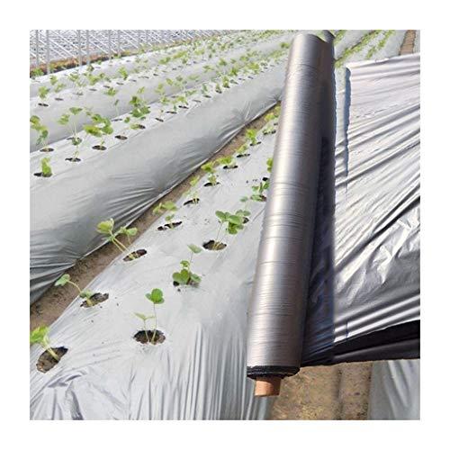 FIDALIKA 40m ~ 5m 0.012mm Agricultral Silvery Reflektierender Film, Obstgarten T-Stück Plastikmulch-Film, Für Treibhaus-Gemüse-Pflege-Abdeckung (Color : Width 0.6m, Size : Length 25m)
