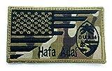 USA Guam Flag...image