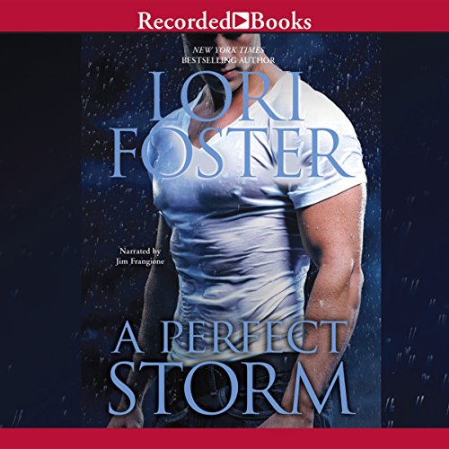 A Perfect Storm cover art