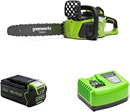 Greenworks Cordless Chainsaw GD40CS40 + 40V Battery G40B4 + Tools Battery Fast Charger G40UC4