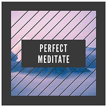 Perfect Meditate, Vol. 1