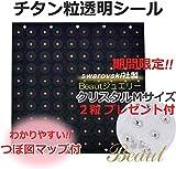 2粒プレゼント付チタン粒 透明耳つぼシール(1シート20粒×5シート) 【初心者用耳つぼマ……