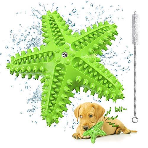 Welpen Spielzeug für Hunde Zahnpflege, Quietschendes Hundespielzeug Unzerstörbar, Seestern Hunde Spielzeug Schwimmend, Hundezahnbürste Kauspielzeug für Kleine/ Mittlere und Große Hunde