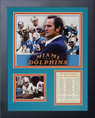 Dan Marino Miami Dolphins NFL Framed 8x10 Photograph Dropping Back