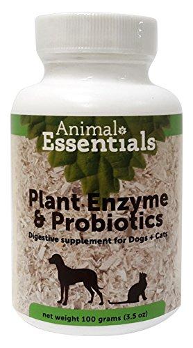 Animal Essentials - Enzyme végétale/probiotique Digestion Chien/Chat Poudre 100g