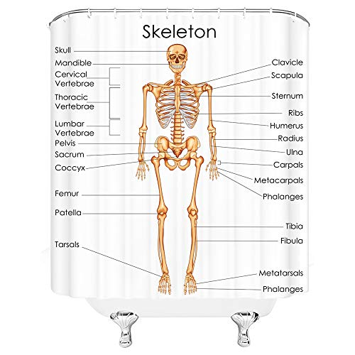 Skeleton Shower Curtain