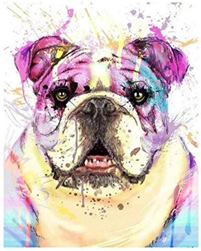 ZHIYYQ Painting by Numbers,DIY Digital Painting, Oil Painting kit for Adults and Beginners, Color Painting, Home Decoration Gift-Color Dog -40X50cm