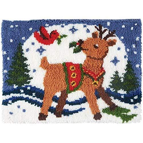 Kit de alfombra de gancho de pestillo para la cobertura de almohada de lanza de bricolaje, linda cubierta de cojín de la costura de la mano de la mano de la mano DIY Kit de artesanía, 20 x 15 pulgadas