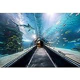 Cassisy 2,2x1,5m Vinilo Submarino Telon de Fondo Escena del Acuario Panorama de Especies Marinas Pez Tropical Fondos para Fotografia Party Infantil Photo Studio Props Photo Booth