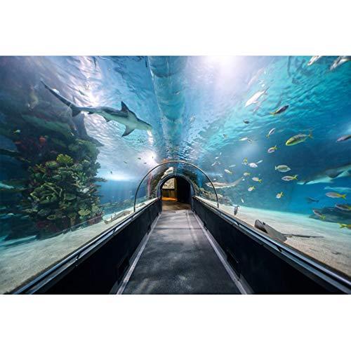 Cassisy 3x2m Vinyl Undersea Wereld Achtergrond Aquarium Scene Marine Soorten Panorama Tropische Vissen Foto Achtergrond voor Partij Foto Shoots Kids Studio Props Fotografie Achtergronden