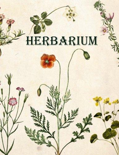 Herbarium: Herbarium von deutschland