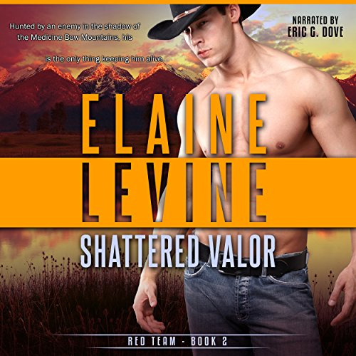 Shattered Valor audiobook cover art