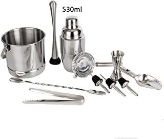 Bartending Making Kit,Stainless Steel Shaker Set 11 Piece Bartender with Martini Bar Tools Barware and Gifts Outdoor Parti...