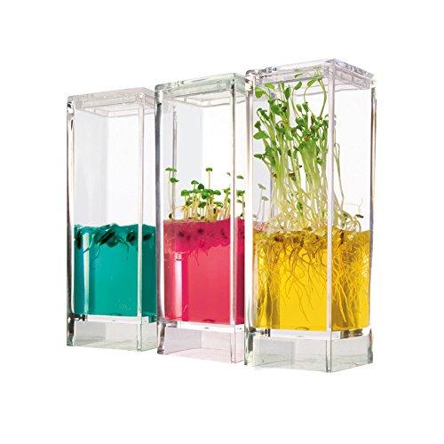 The Art Of Science Plantarium Garden Lab Ecosystem - Kit Completo para Recrear y Observar el Crecimiento de Las Plantas - Actividades Educativas para Niños - Certificado por la NASA