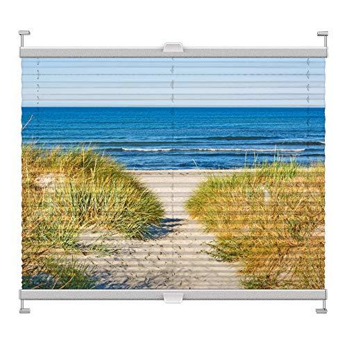 Plissee mit Motiv 2001 nach Maß Schrauben in Glasleisten Klemmen auf Fensterrahmen Digitaldruck Sichtschutz lichtdurchlässig fest verspanntes Jalousie Rollo Fenster innen Breite 51-74 Höhe 101-124 cm