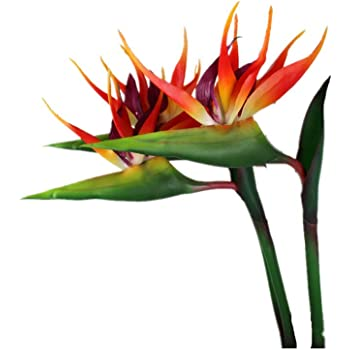 Nearly Natural 1455 Large Birds of Paradise in Vase