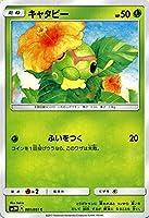 ポケモンカードゲームSM/キャタピー(C)/光を喰らう闇