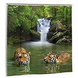 DmiGo Cortina de baño,Safari Asian Siberian Tigers Fabric Set de decoración de baño con Ganchos 180cmx180cm