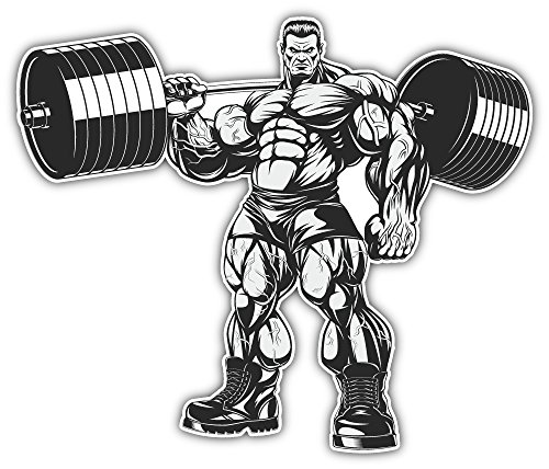 Strict Coach Bodybuilding Bumper Sticker Vinyl Art Decal for Car Truck Van Wall Window (24 X 20 cm)