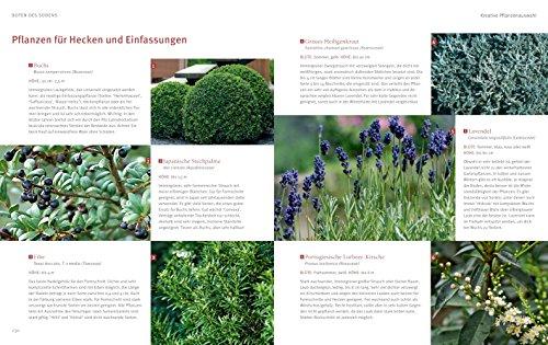 Mediterrane Gärten gestalten - 9