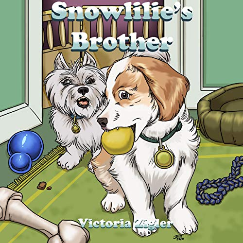 Snowlilie's Brother cover art