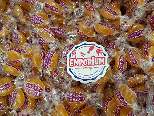 Brach's Butterscotch Discs Hard Candy - 1.5 lbs of Fresh Delicious Assorted Bulk Wrapped Candy with Refrigerator Magnet