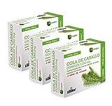 Cola de caballo Complex 3.250 mg, 60 cápsulas, con té verde, rabos de cereza y castaño de indias (Pack 3 unid.)