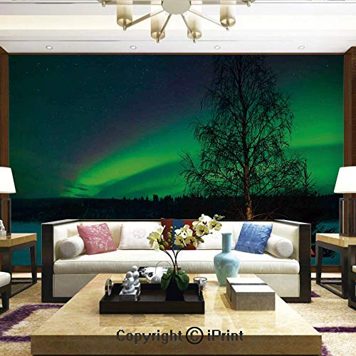 Lionpapa_mural Wall Decoration Designs for Bedroom,Kitchen,Self-AdhesiveCamping Tent Under Magnetic Field Nature Picture,Home Decor - 100x144 inches
