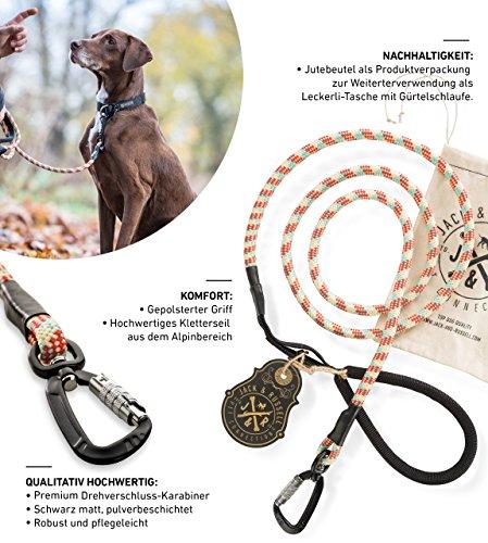 Jack & Russell Premium Hundeleine Kosmo aus Profi-Kletterseil und Premium Drehverschluss-Karabiner - Soft-Grip Handschlaufe (Rot/Creme/Türkis)