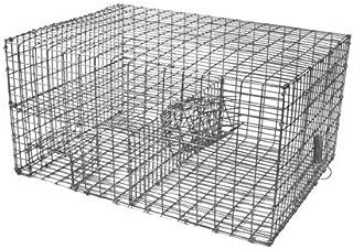 Wildlife Control Supplies WCS Multi Catch Sparrow Trap