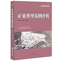 矿业典型案例评析