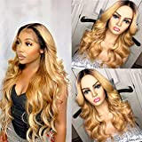 Closure Wig Human Hair Body Wave Ombre Color 1b/27 Lace Closure Wig Pre Plucked Hairline With Baby Hair Indian Natural Hair 130 Density Same Day Delivery Grade 8a 14 Inch