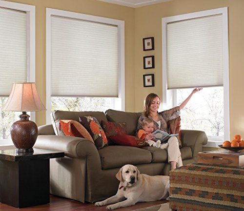 Windowsandgarden Custom Cordless Single Cell Shades, 58W x 46H, Cool White, Any Size 21-72 Wide and 24-72 High
