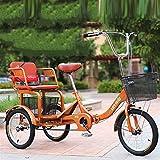 Triciclo Para Adultos Triciclo con 3 Ruedas 1 Marchas Bicicleta...