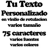 Pegatina Vinilo Personalizado con tu Texto o tu Nombre - Vinilo Decorativo Pegatina Coche, Pared, Cristal, Puerta, Botella, Libro, Correos, Casco, Bici