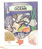 Animals of the Ocean (Windows on Nature)