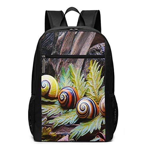 Schulrucksack Farbe Schneckenhäuser, Schultaschen Teenager Rucksack Schultasche Schulrucksäcke Backpack für Damen Herren Junge Mädchen 15,6 Zoll Notebook