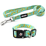 azuza Dog Collar and Leash Set, Cute Patterns on Nylon Collar and Matching Leash, Great Option for Extra Small Dogs