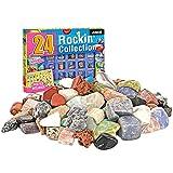 Gidenfly - Kit de excavación de fósiles de minerales de roca, 24 piezas, juego de actividades de colección de minerales y fósiles con piedras preciosas, juguetes educativos divertidos