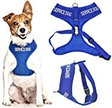 SERVICE DOG (Do Not Disturb/Dog Is Working) Blue Colour Coded Non-Pull Front and Back D Ring Padded and Waterproof Vest Dog Harness PREVENTS Accidents By Warning Others Of Your Dog In Advance (S)