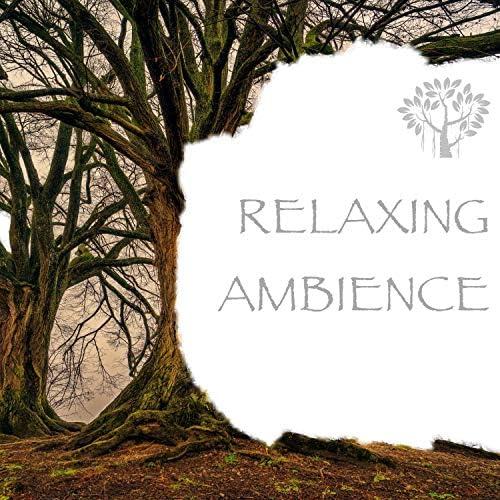 Natural Spirit, Mother Nature FX & Nature Sounds