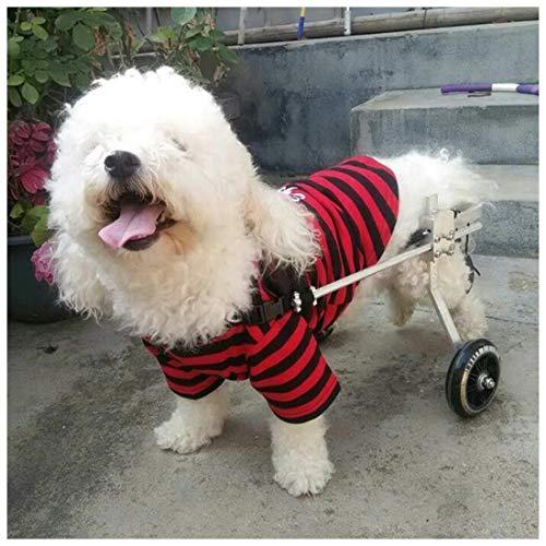 Carrito elevador para perros, silla de ruedas, patas traseras, scooter, 2 ruedas, ajustable, para discapacitados, para animales, silla de ruedas, perro mayor, gato, mascota, carrito de rehabilitación