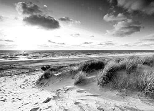 DÜNEN Fototapete VLIES-350x260 cm (1553A)-Nordsee See Strand Meer Landschaft Schwarz Weiß Wandtapete-Inkl. Kleister-Vliestapete Bild Dekoration Wand-Dekor Moderne Motiv-Tapete Panorama Poster XXL