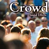 Active Social Crowd in Bar or Restaurant with Busy Voices and Dish Noise